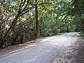 The Ridgeway, Eastnor - geograph.org.uk - 29899.jpg
