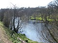 The River Dart, near Dartington College - geograph.org.uk - 1252893.jpg