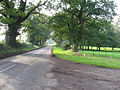 The Road To Lyng - geograph.org.uk - 296198.jpg