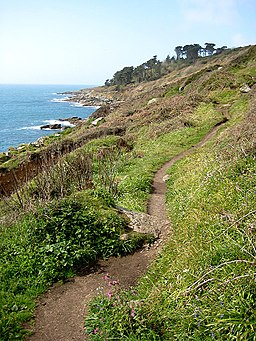 The South West Coast Path approaching Slinke Dean - geograph.org.uk - 781796