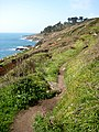 The South West Coast Path approaching Slinke Dean - geograph.org.uk - 781796.jpg