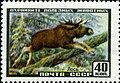 The Soviet Union 1957 CPA 1992 stamp (Eurasian Elk).jpg