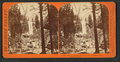 The Vernal Fall, 350 feet high, Yo-Semite Valley, Mariposa County, by Lawrence & Houseworth 3.png