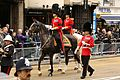 The Welsh Guards (8658939198).jpg