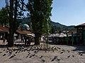 The birds of Sarajevo (9461985438).jpg
