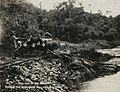 The end of the chute (at Vaca). Rolling the mahogany logs into the river.jpg