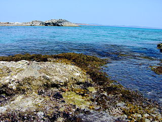 The fishing port of Es Calo, Formentera (160740241).jpg