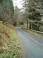 The road through Inverliever Forest - geograph.org.uk - 101511.jpg