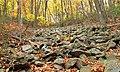 Thousand Step Trail (7) (30041064403).jpg