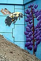 Timberlea-0188 - Highway 103 Overpass Mural (23500799839).jpg