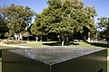 TonySmith Playground(3-8) Back.jpg