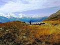 Tour de l' Oisans 6.jpg