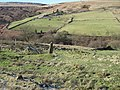 Towards Sun Royd from Royd - geograph.org.uk - 1703579.jpg
