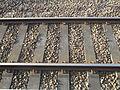 Tracks at Grateley station.jpg
