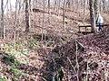 Trail 1 PB250209.jpg