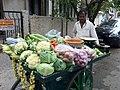 Traveling veggie man (6290972598).jpg