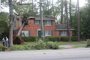 Hurricane Hermine - A tree fallen on a house in Valdosta, Georgia