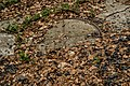 Trichtersperre Haselbach-0285.jpg