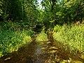 Trout Brook in Miesville Ravine.jpg