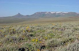 Trout Creek Mountains.jpg