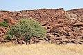 Twyfelfontein, Rock Engraving - panoramio - Frans-Banja Mulder.jpg