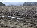Tyninghame ploughed field - geograph.org.uk - 703668.jpg