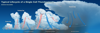 Storm cell - Life cycle of a single thunderstorm cell