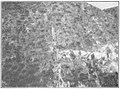 USGS Bulletin787 Plate12 FigureA Pacific Vein on South Alpine Claim.jpg