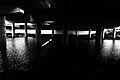 Under the bridge - Flickr - Fishyone1.jpg