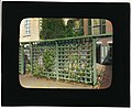 Unidentified townhouse garden, probably in New York, New York. LOC 7536002934.jpg
