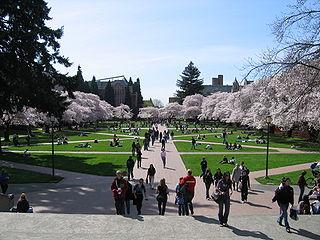 University of Washington Quad