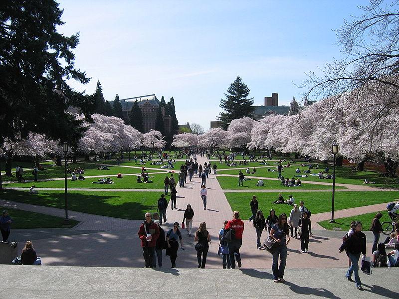 File:University of Washington Quad, Spring 2007.jpg