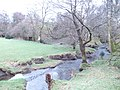 Upper waters of the Afon Dulas - geograph.org.uk - 345218.jpg