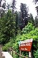 Us-id-kootenai-mineral-ridge-trail.jpg