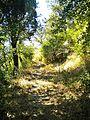Val di Mezzana-paesaggio 08.jpg