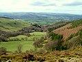 Valley around Plas y Nant - geograph.org.uk - 607118.jpg