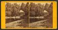 View at Pine Bank, Jamaica Plain, by John B. Heywood.png