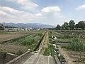 View near Kasuya Research Forest of Kyushu University.jpg
