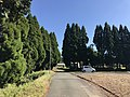 View near Shimono Pond 1.jpg