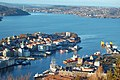 View of Bergen Rundemanen 2009 1.JPG