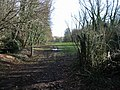 View through Garden Wood to Dane Court - geograph.org.uk - 675079.jpg