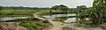 Village Landscape with Stream Ichamati - 360 Degree View - Purba Para - Baduria - North 24 Parganas 2015-04-11 7256-7258.tif