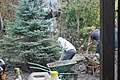 Volunteering (8619094917).jpg