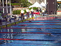 WDSC2007 Day5 M400Freestyle-2.jpg