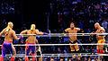 WWE 2014-04-06 17-35-35 NEX-6 9256 DxO (13942474084).jpg