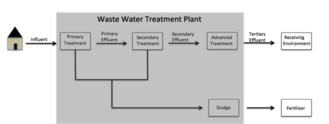 Paraben - General flow of parabens as they make their way through wastewater treatment plants.