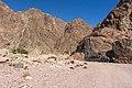 Wadi Gnai 2020-03-08-16.jpg