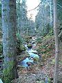 Wandern im November in Todtmoos - panoramio (20).jpg