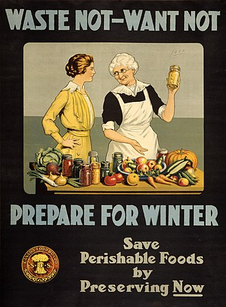 Food waste - Image: Waste not want not WWI poster