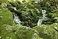Waterfalls in Wakasugi Primeval Forest.jpg